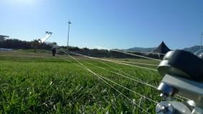 2012 Marseille - Barresi Dogstake